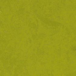 Linoléum                                                                                 | STYLE EMME SILENCIO Xf²™ 18dB