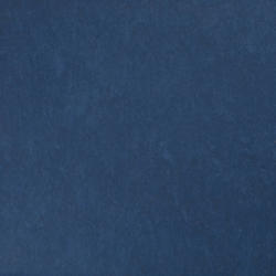 Linoléum                                                                                 | STYLE EMME Xf²™ (2,5mm)
