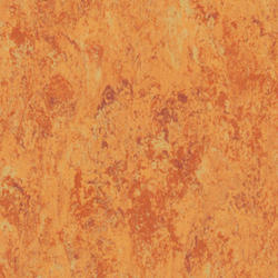 Linoleum | VENETO xf²™ (2.5 mm) |                                                          Veneto AMBER 636