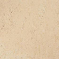Linoléum                                                                                 | VENETO Xf²™ (2,0mm)