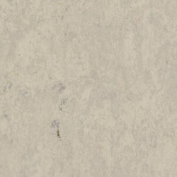 Linoleum | VENETO ESSENZA (2.5 mm) |                                                          Veneto GREY 793