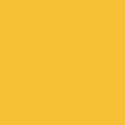 Solutions sportives | Omnisports Reference |                                                          Solid YELLOW
