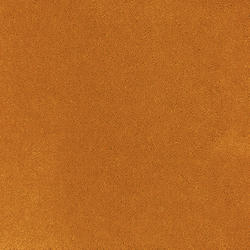 Carpet Rolls | Asteranne |                                                          Asteranne A411  5101