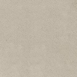 Carpet Rolls | Asteranne |                                                          Asteranne A411  9538