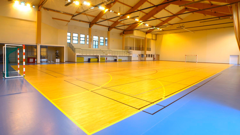 Indoor Sports Omnisports Reference 6 5 Mm Tarkett