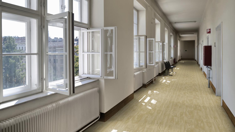 Znalezione obrazy dla zapytania safetred design acoustic