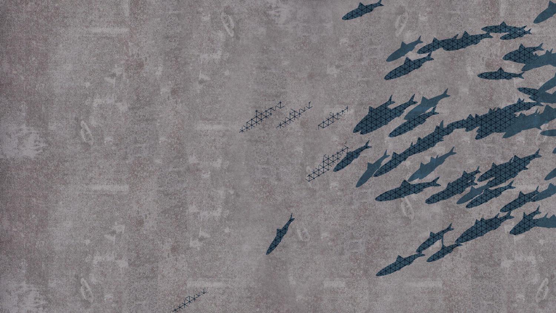 iD Supernature & Tattoo Concrete design customizable floors
