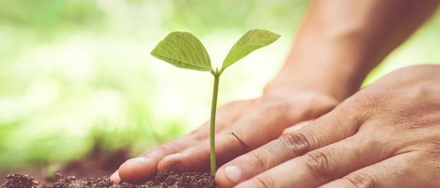 Hållbarhetsartiklar