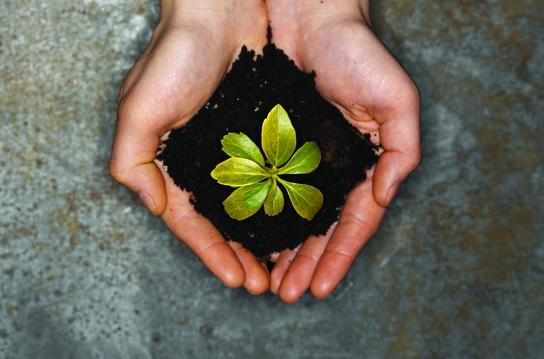 Unsere Nachhaltigkeitsstrategie in die Praxis umsetzen