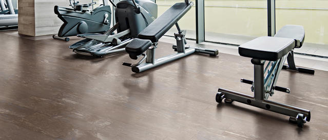 Exercise/Fitness Rooms