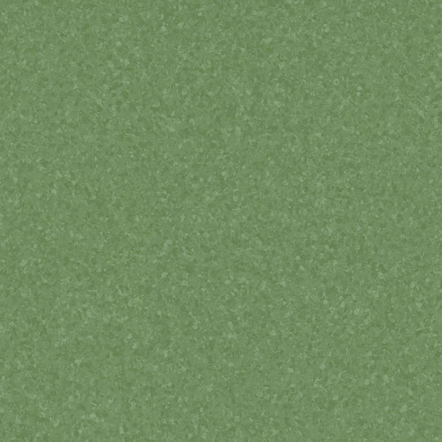 Eclipse DARK GREEN