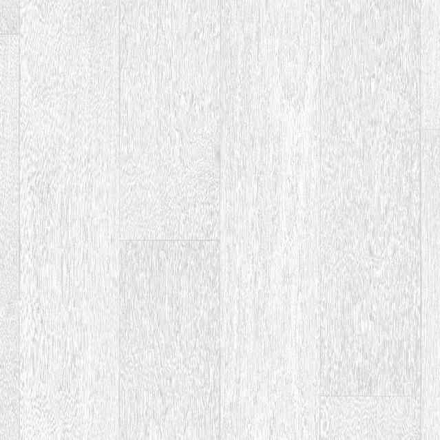 Derby WHITE